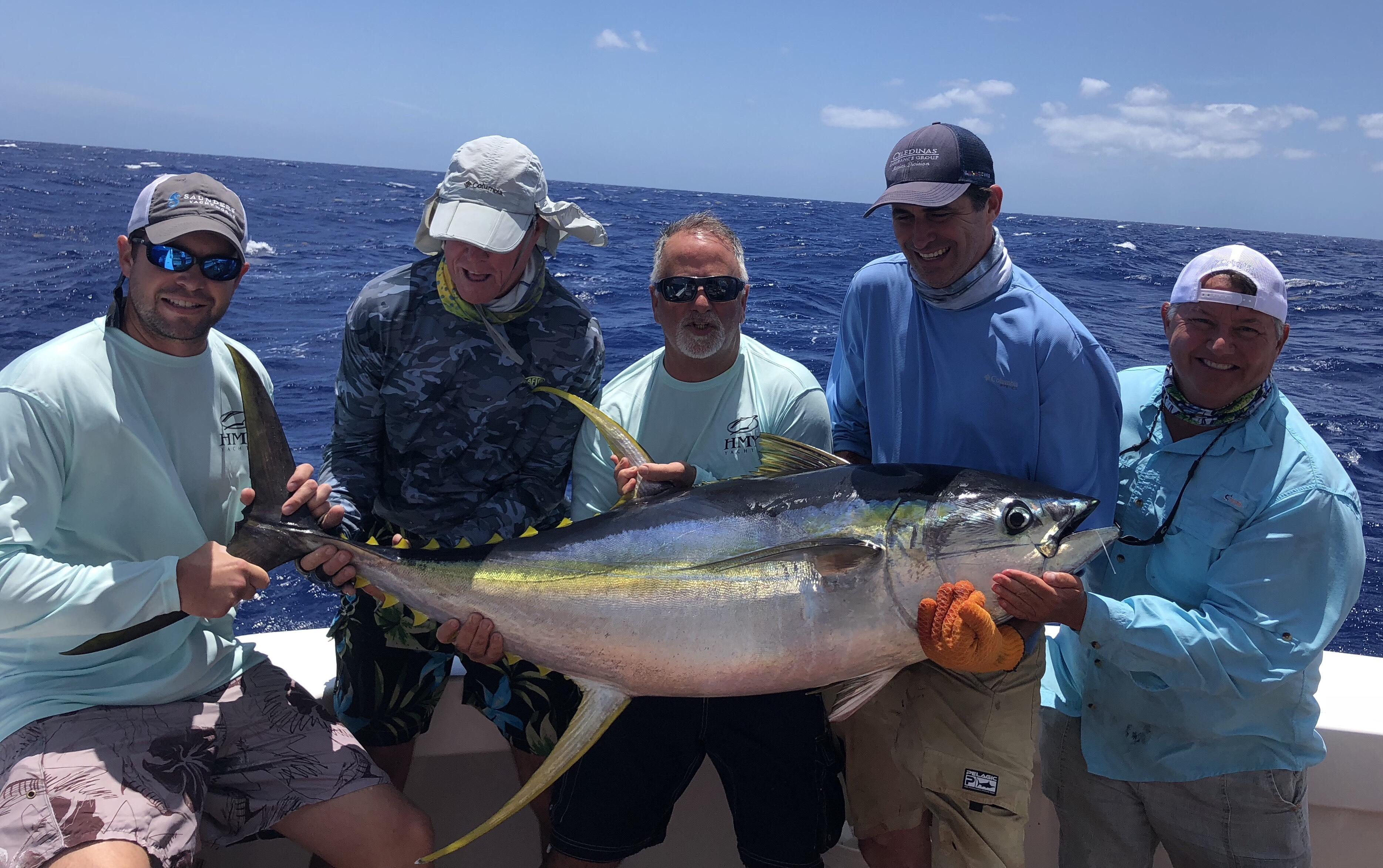 Image 2087: tuna