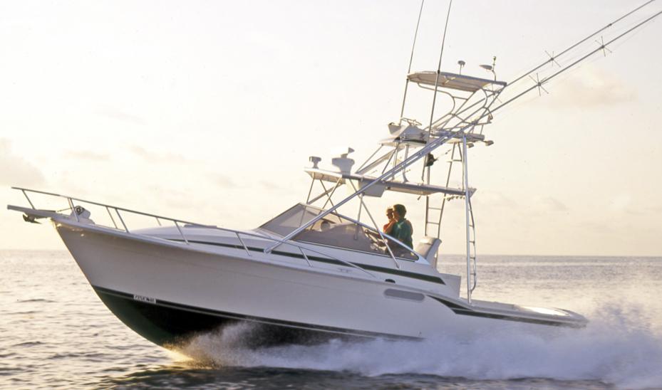 Blackfin 31 Combi