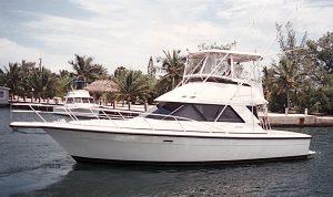 Phoenix 37 Convertible; 38 SFX