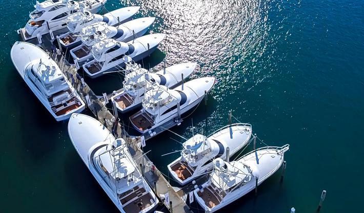 Viking VIP Boat Show