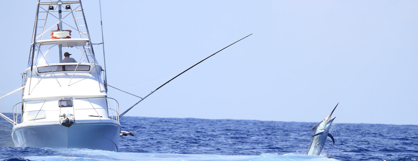 Open Ocean and Deep Sea Fishing Tips For Beginners