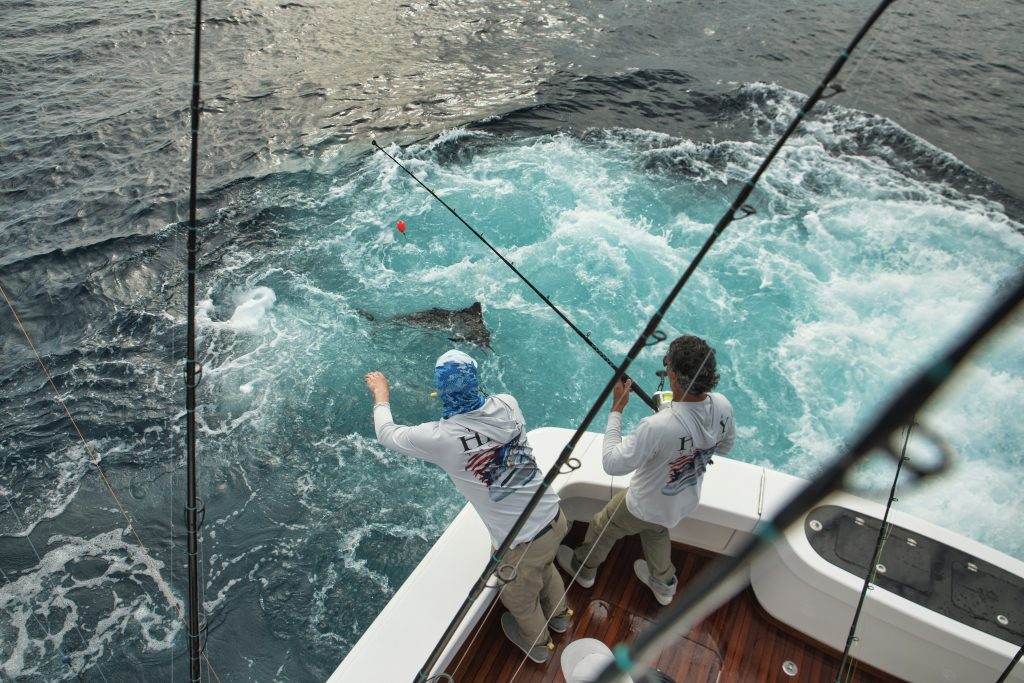 Sailfish Release Onboard The Viking 54'